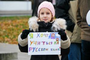 Русская школа - пикет